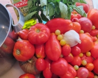 Preserving the Harvest--Heirloom Tomato Sauce