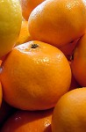 Fresh, sweet clementines