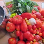 Heirloom Tomato Sauce Ingredients
