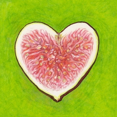 fig_heart[1] (463x463)