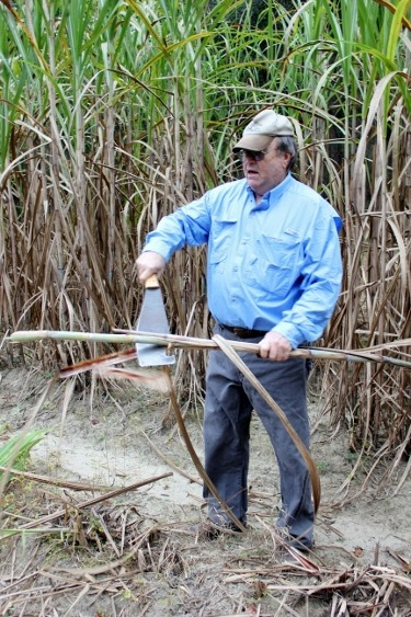 Bill Outlaw demonstrates sugar cane harvesting